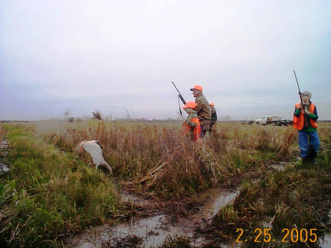 Illinois plantation for Fishing license in louisiana